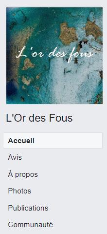 Facebook_lordesfous